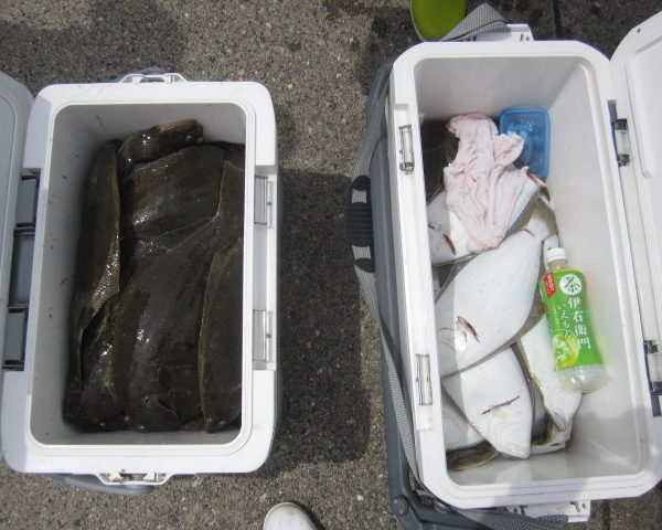釣り船幸盛丸  2018/09/02「日」釣果