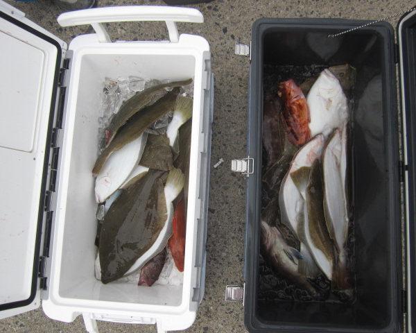 釣り船幸盛丸  2018/09/26「水」釣果